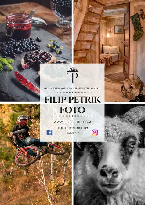 plakat_filip_petrik_foto
