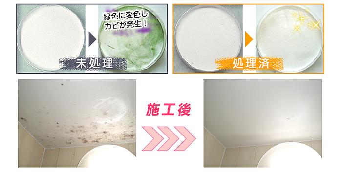 浴室清掃カビコーティング 大阪