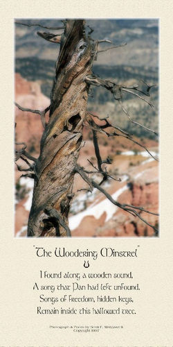 The Woodering Minstrel