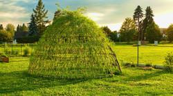 Živé stavby z vrby - Vrbové stavby