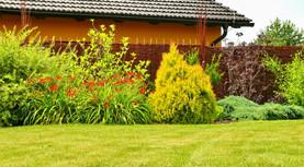 Proutěné ploty mají ve srovnání s rákosovými či bambusovými rozhožemi mnohem vyšší životnost
