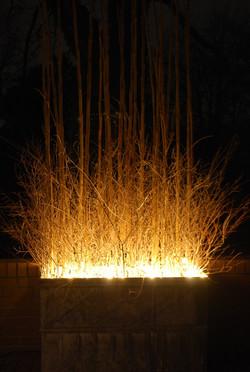 Vrbové osvětlení zahrady