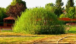 Vrbové zastínění pískoviště