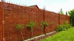 Proutěný plot s nejvyšší stínivostí