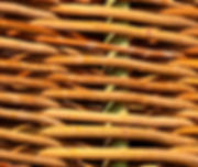 Diskuze na téma oplocení zahrady. Které oplocení či zastínění je pro Vaši zahradu tím nejvhodnějším řešením? A o jaké zkušenosti se podělili ostatní, kteří již tento problém v minulosti řešili? www.naplot.cz