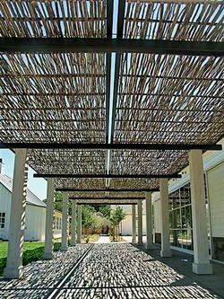 Ploché střechy zastíněné proutím