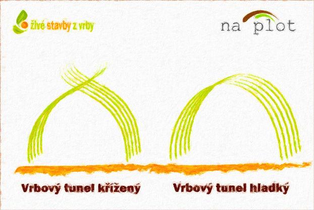 Vrbový tunel - typy tunelů z živé vrby - schematický náčrt hladkého a kříženého vrbového tunelu