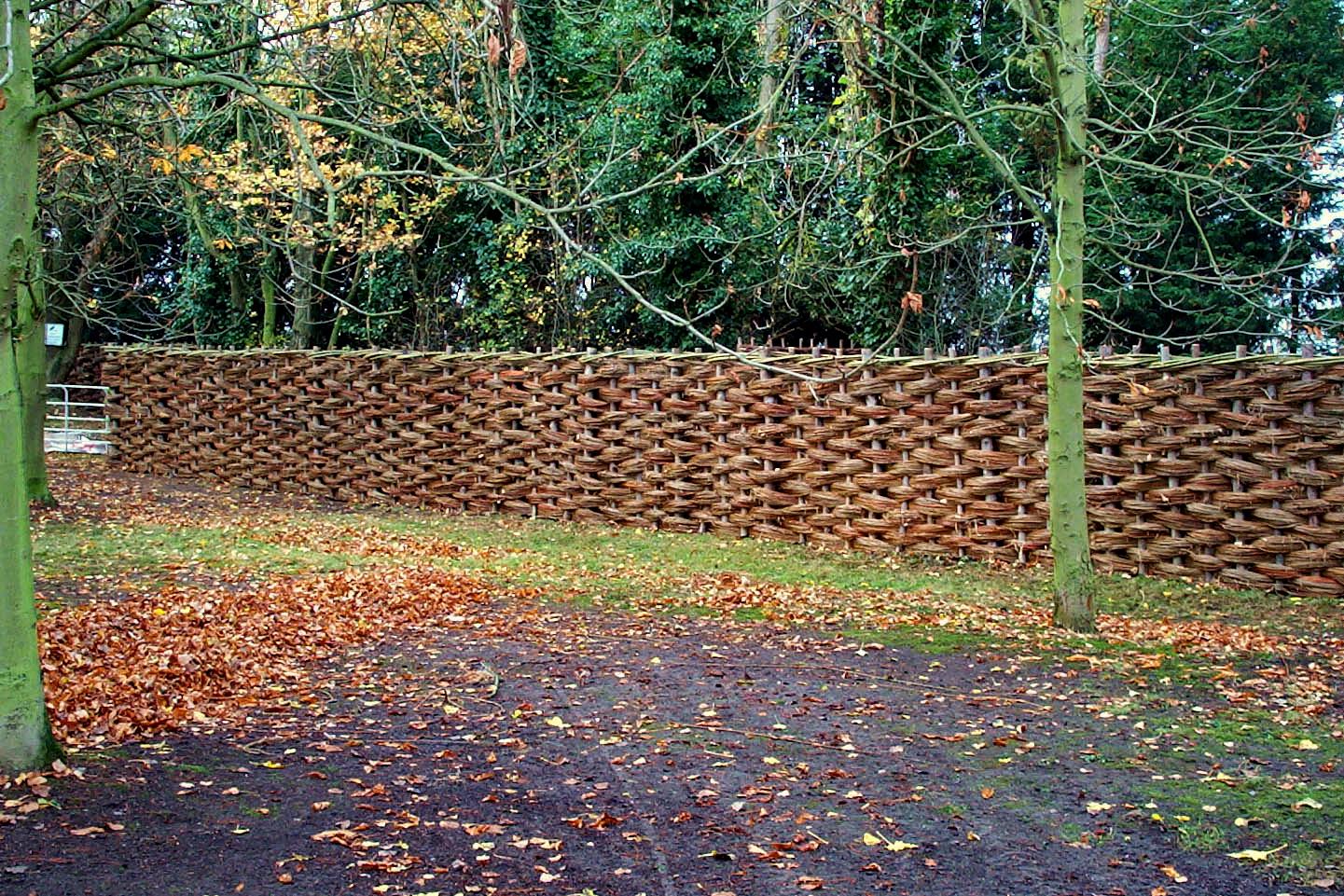 Proutěné ploty a stěny