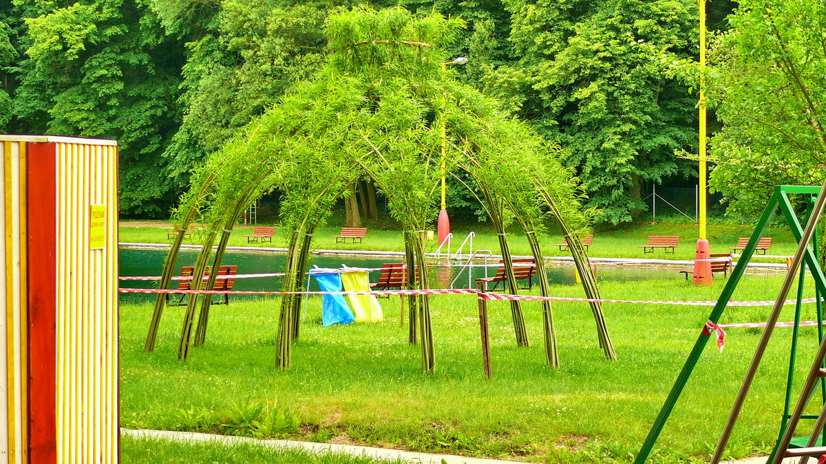 Vrbový altán v červnu