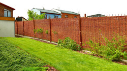 S proutěnými ploty zahrada rozkvete