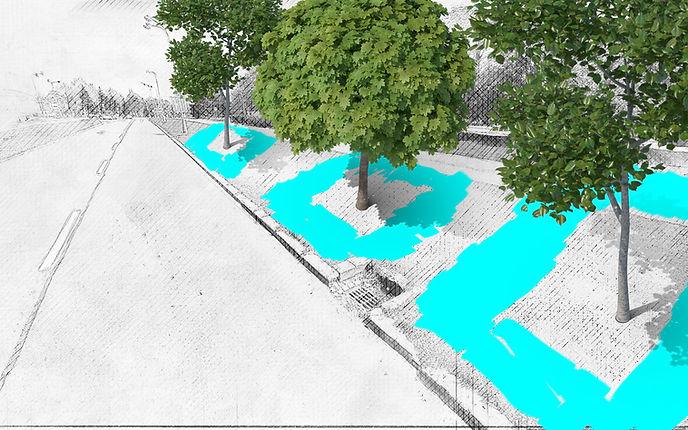 TREEIB-City-ideal-irrigation-zonejpg.jpg