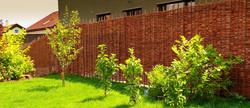 Proutěné ploty hladké
