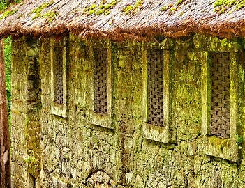 Proutěné okenice, středověké ploty, stěny slamů, na které je následně instalována hliněná omítka, to vše jsou pro nás inspirativní projekty, které vnášejí do naší práce radost a nové pohledy.