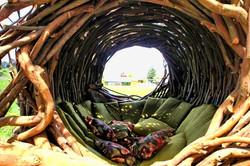 Posezení v hnízdě