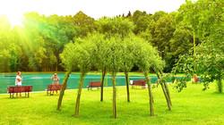 Živý vrbový altán v červenci