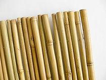 Bambusová rohož na pergolu