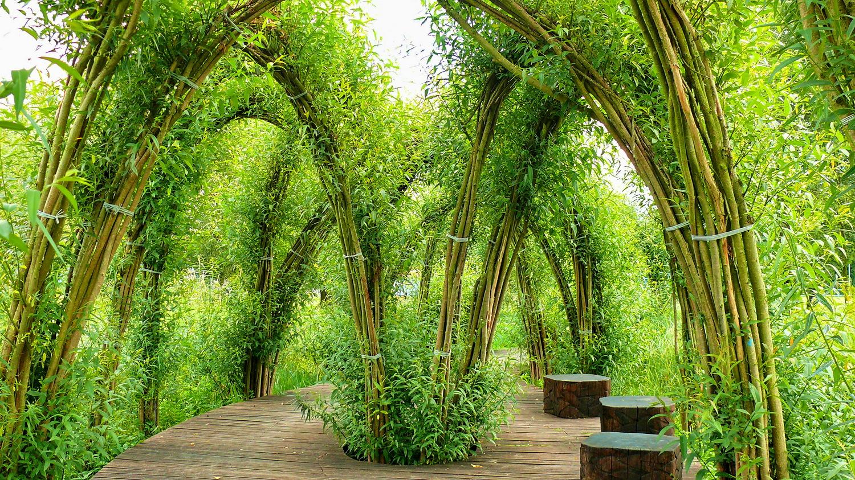 Vrbové stavby