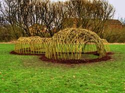 Zelené (živé) stavby z vrby
