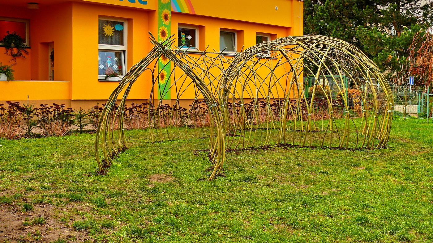 Vrbový tunel z živé vrby