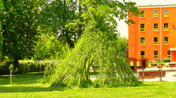 Vrbové teepee z živé vrby - rašení