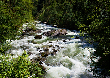 watershed_image.png