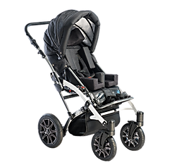 Hippo%20stroller_edited.png