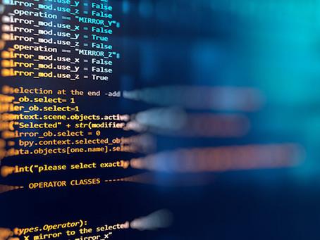 Protezione del software: limiti e potenzialità
