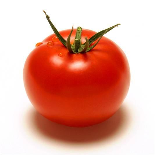 طماطم كابيا
