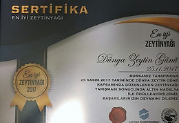 Ozelia is  awarded with GOLD Medal at Akhisar Trade Exchange`s Annual EVOO Quality Contest.