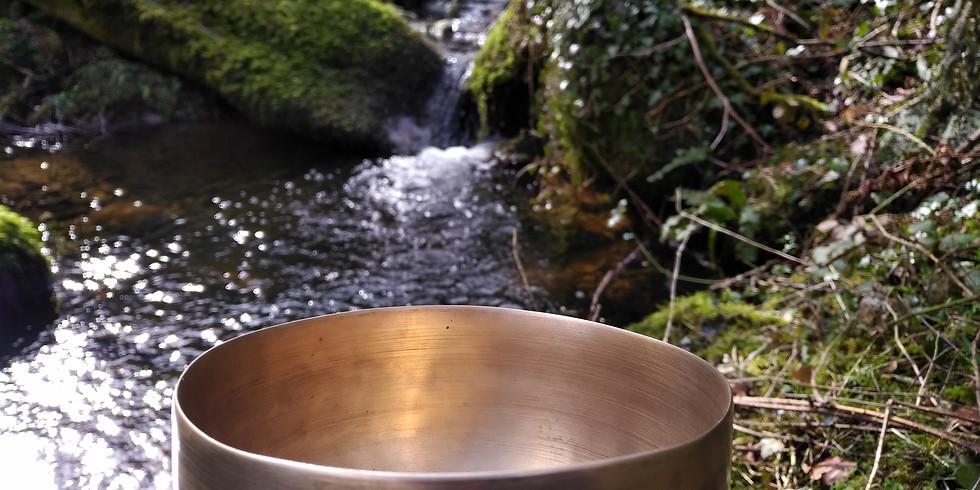 Dru Yoga & Gong Bath
