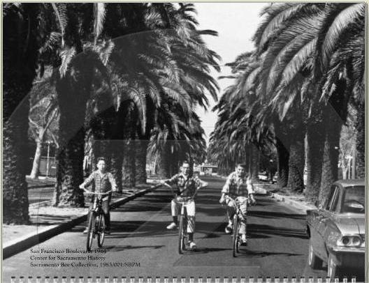 SF blvd on bikes old palms