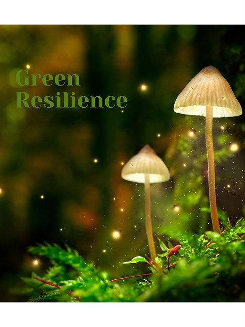 Green Resilience: Mushroom and Plant Medicine