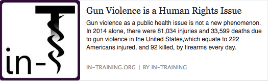 Gun Violence as a Human Rights Issue