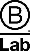 B-Lab-Logo-176x300.jpg