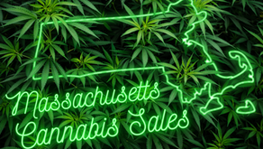 Massachusetts Dispensary Sales Surge Amidst Stringent Retail Regulations