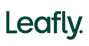 leasfly logo.png