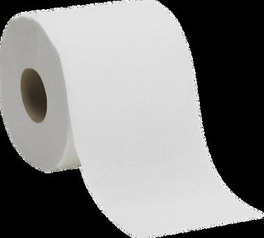 toiletpaperroll2.png