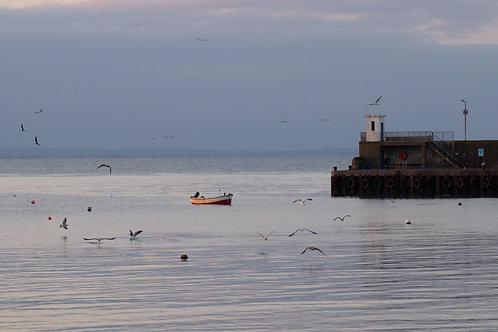 Boat, Skerries, 2021