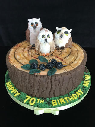 OWLS WS HERS.JPG