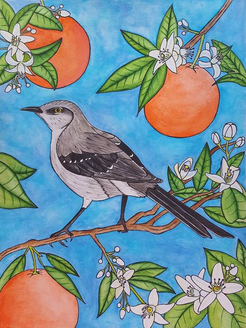 Mockingbird & Orange Blossoms