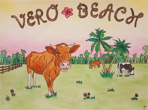 Vero Cows