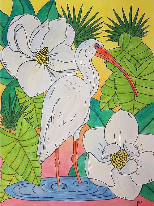 """""""Magnolia Ibis"""" Fine Art Print"""