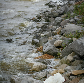 Rocks at the Dog River leading into Mobile Bay