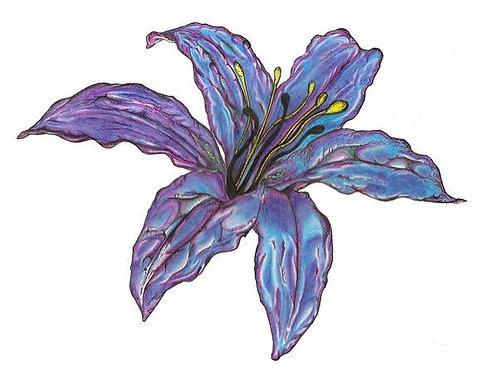 """Lily"" Fine Art Print"