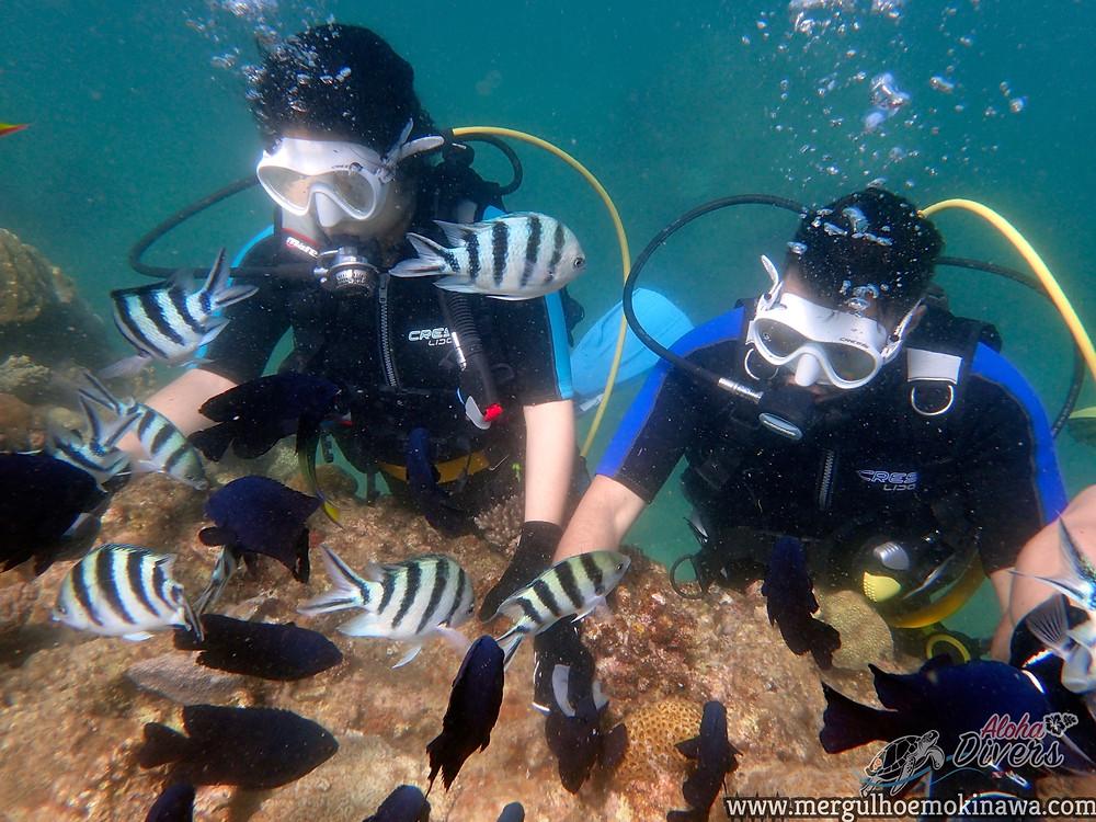 Mergulho Experimental (DSD) - Aloha Divers Okinawa - Mergulho em Okinawa