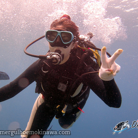 Partiu Mergulho em Okinawa - Aloha Divers Okinawa
