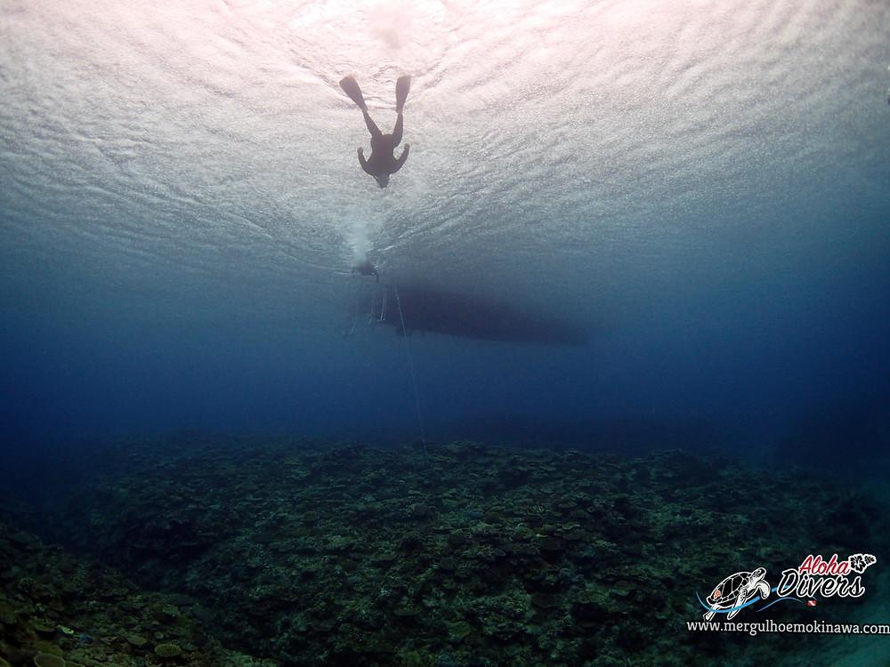 Mergulho Experimental em Kerama - Aloha Divers Okinawa