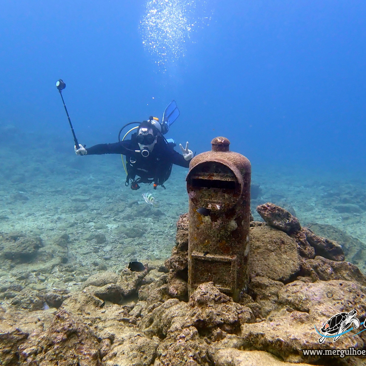 Andre é do Brasil e veio mergulhar em Okinawa com Aloha Divers Okinawa. 2 dias de mergulho com direito a vê muitas vidas