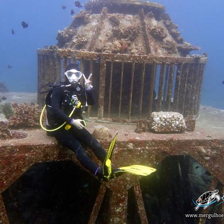 Depois da Thailandia, mergulho em Okinawa - Aloha Divers Okinawa