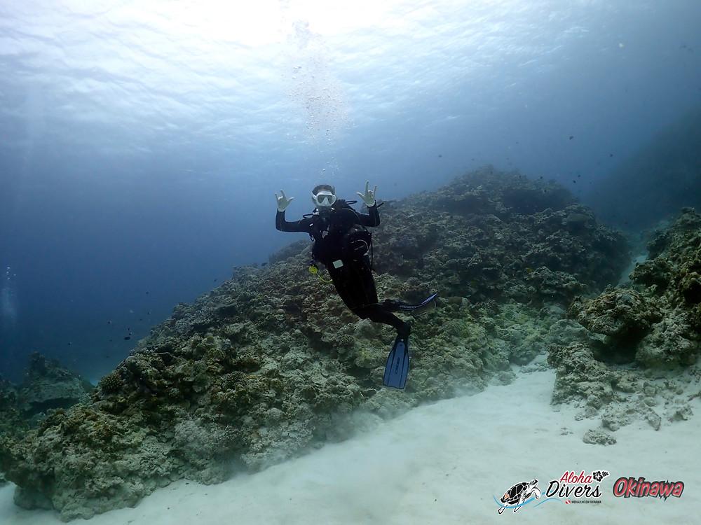Fun DIve in Kerama Island - Aloha Divers Okinawa